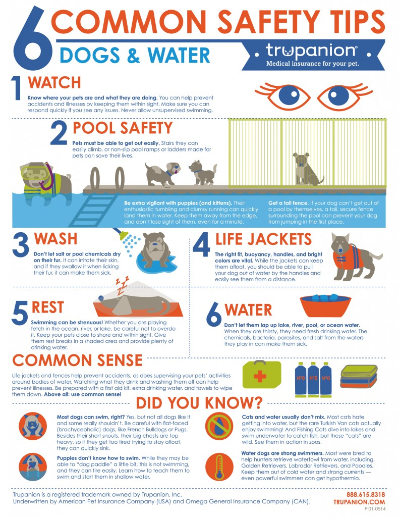 Trupanion Water Safety Infographic - 8.5 x 11