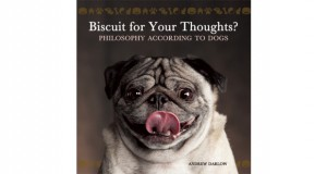 Biscuit for your thoughts slider