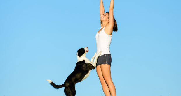 exercise-dog-crop
