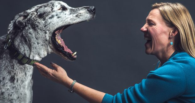Audrey Ruple, a veterinary epidemiologist and assistant professor of One Health Epidemiology in the College of Health and Human Sciences' Department of Public Health, with Bitzer, a Great Dane. (Purdue University photo/Rebecca McElhoe)