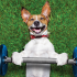 workout-with-dog
