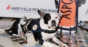ASPCA Humane Awards Luncheon