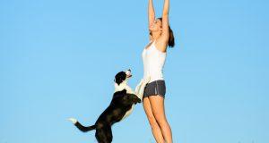 exercise-dog-crop