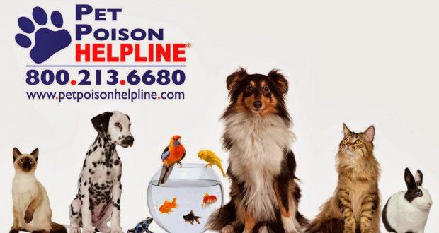pet-poison-helpline