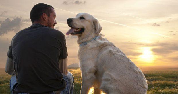 dog-best-friend